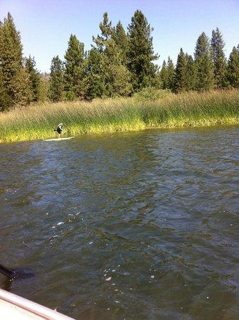 Princess Campground: Hume Lake
