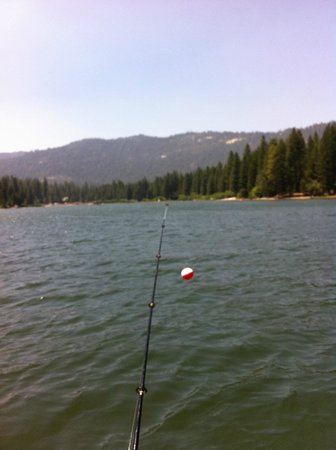 Hume lake picture of princess campground sequoia and for Canyon lake fishing ca
