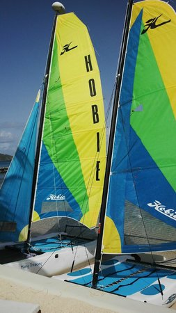 Blue Rush Water Sports And Jet Ski Rentals Inc. : Blue Rush delivered Hobie Cats to Aquamare Beach July 2014