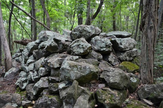 Dickey Ridge Trail: Rock Pile on Fox Hollow Trail
