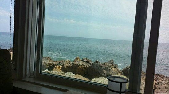 Dukes Malibu: View from my table.