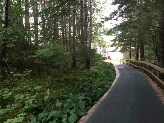 Waterfall Resort Alaska : Trail up to the dining hall (Great Food!)