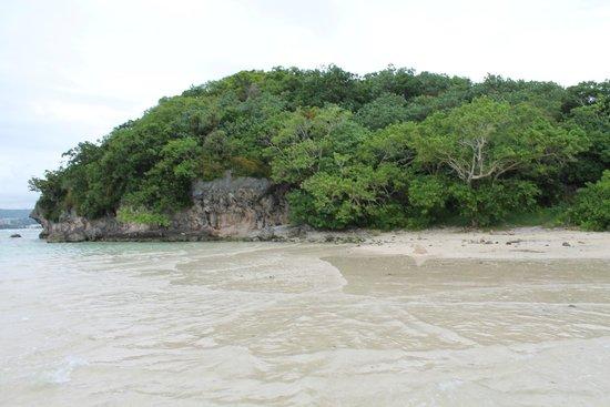 Alpat Island: Вид на остров с его берега
