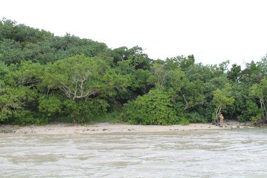 Alpat Island: Вид с берега острова Алупат