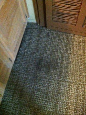 Temecula Creek Inn: Carpet stain/burn?