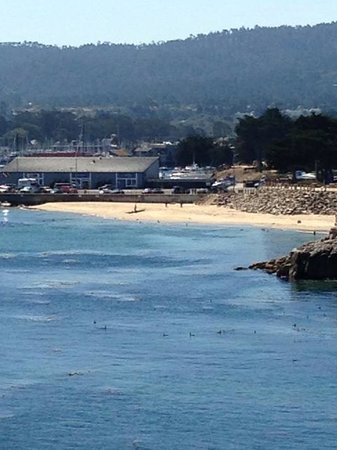 Monterey Plaza Hotel & Spa: the view of a Monterey Bay beach visible from the hotel