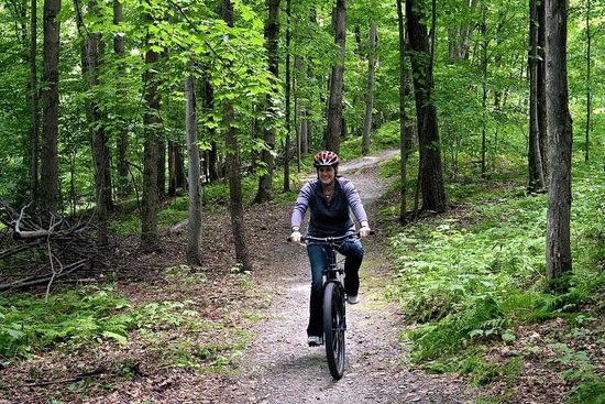 Trapp Family Lodge : Mountain biking trails on the resort