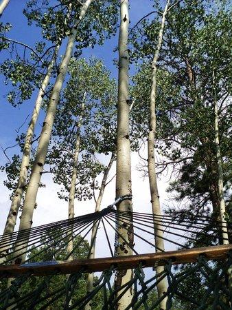 Dripping Springs Resort: hammock view of sky and aspen