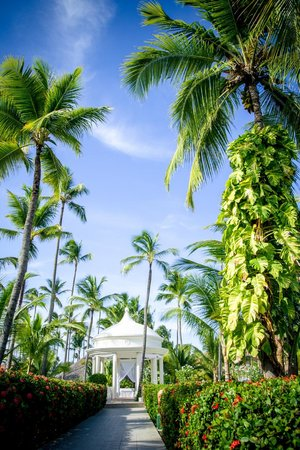 Majestic Colonial Punta Cana: Perfection