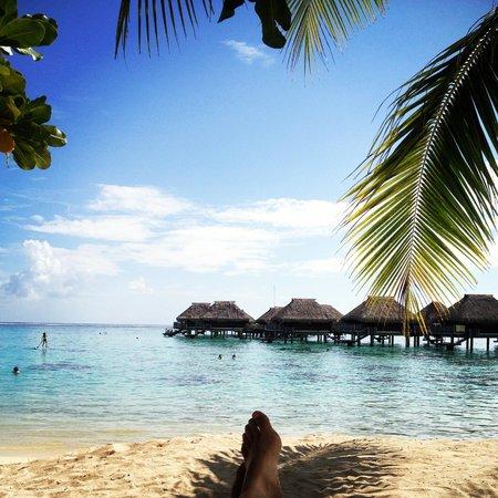 Hilton Moorea Lagoon Resort & Spa : Beautiful