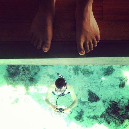Hilton Moorea Lagoon Resort & Spa : Glass window in room
