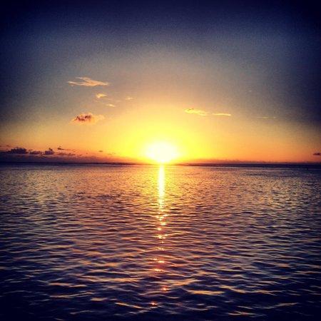 Hilton Moorea Lagoon Resort & Spa : Beautiful sunsets from room