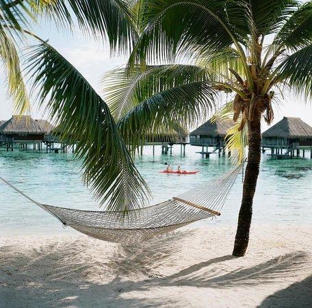 Hilton Moorea Lagoon Resort & Spa : Beach