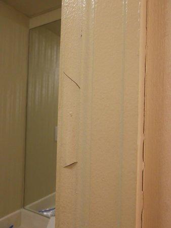Ramada Denver Downtown: bathroom wall