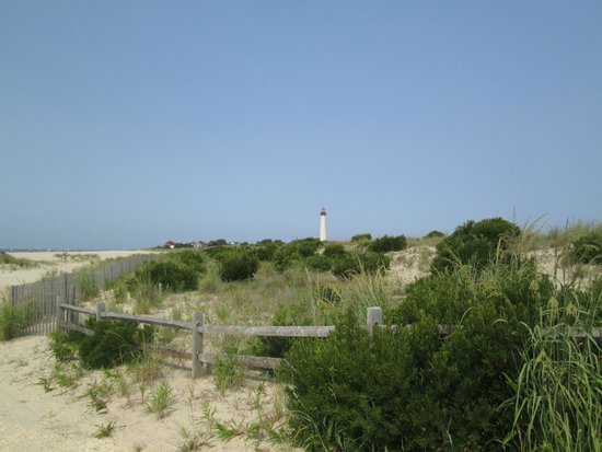 Cape May Lighthouse: View of Lighthouse