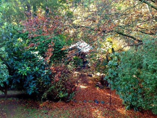 Belle Le Vie: Hidden Cottage view from top garden