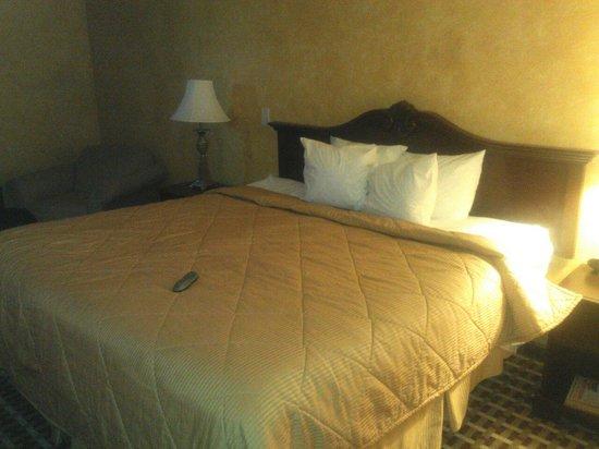 Motel 6 Walton-Richwood : Nice room