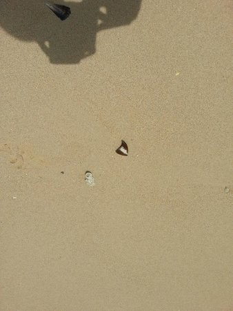 Sofitel Krabi Phokeethra Golf & Spa Resort: Broken glass on the beach !