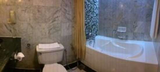 Mutiara Johor Bahru: Renovated bathroom