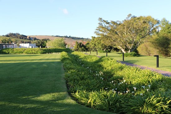 Spier Hotel: View of the grounds towards the restaurant.