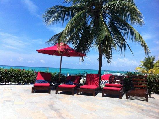 Royal Decameron Montego Beach : The Pool section