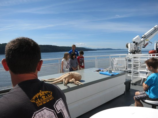 BC Ferries : Naturalist giving entertaining presentation