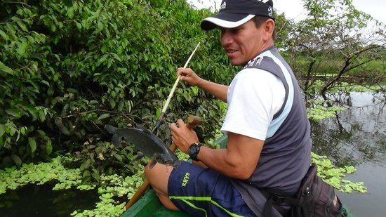 Amazonia Expeditions' Tahuayo Lodge: Our Guide Orlando Spear fishing