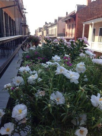 Hotel Maison de Ville: the beautiful flowers on the balcony
