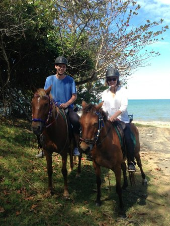 Kurrimine Beach Horse Rides