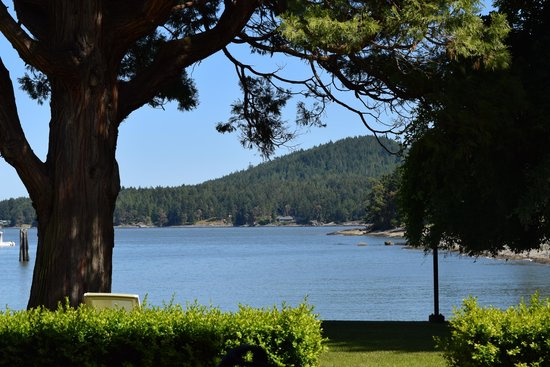 Galiano Oceanfront Inn and Spa: View from the room's patio