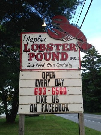 Naples Lobster Pound: yes ! great lobster