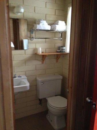 Bear Mountain Motel: Bath 1