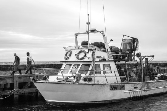 The Rocks: local seafood