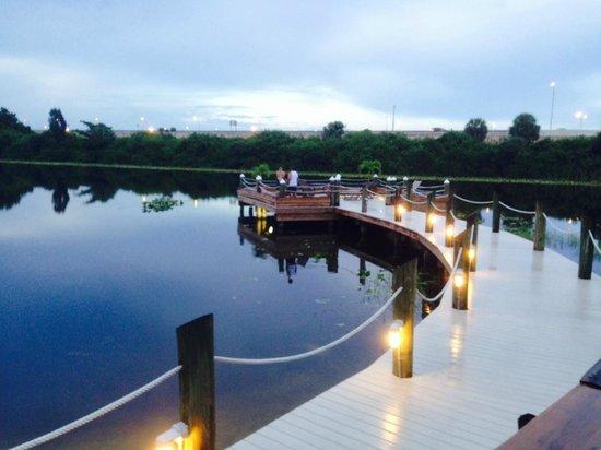 Hilton Palm Beach Airport : boardwalk by lake