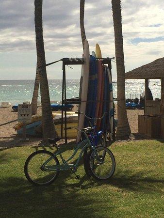 Mauna Lani Bay Hotel & Bungalows: Afternoon at the resort.