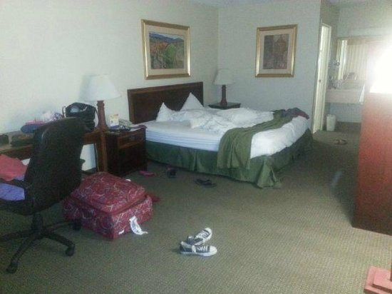 Sawgrass Inn & Conference Center: Dont mind the mess. The room when we woke up...