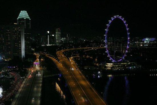 Marina Bay Sands: ホテル北端からの眺め
