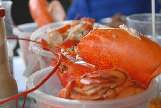 Settlers Saltwater Cafe: Buckets are provided for the shells