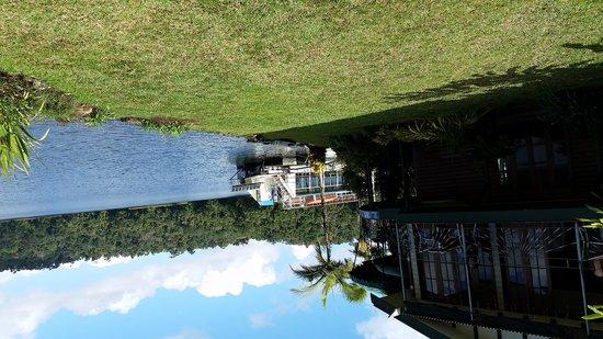 Lake Barrine Rainforest Cruise and Teahouse : Lake Barrine