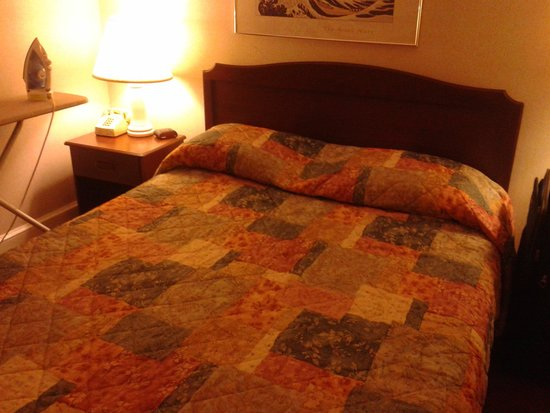 Hotel Harrington: Comfortable bed, clean sheets no bugs.