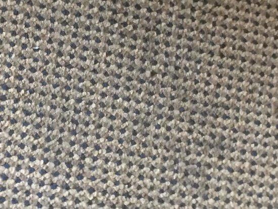 Sheraton Bucks County Hotel : Carpet Stains