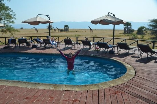 Maramboi Tented Camp: Pool with twiga!