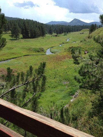 Black Hills Cabins and Motel at Quail's Crossing : View from balcony
