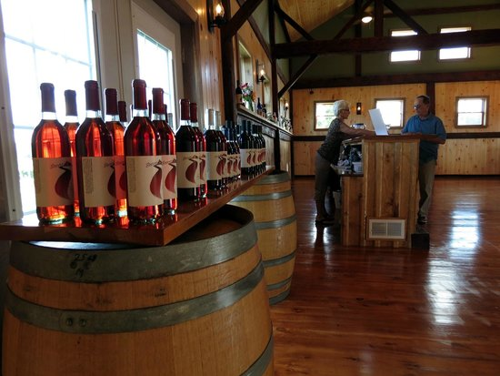 Branchport, NY: Sampling wine