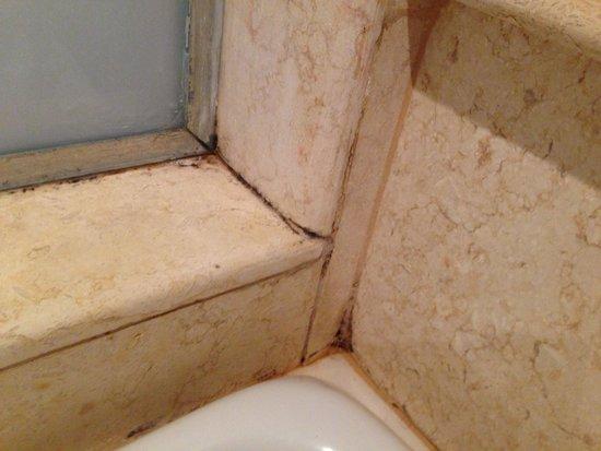 Grand Rotana Resort & Spa : Shower mould