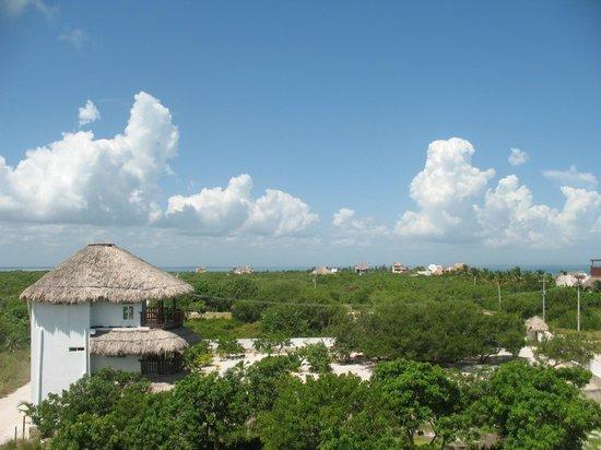 Casa BlatHa : Vista desde el roof