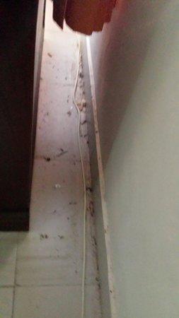Puri Panca Jaya Hotel: Viezigheid op de kamer
