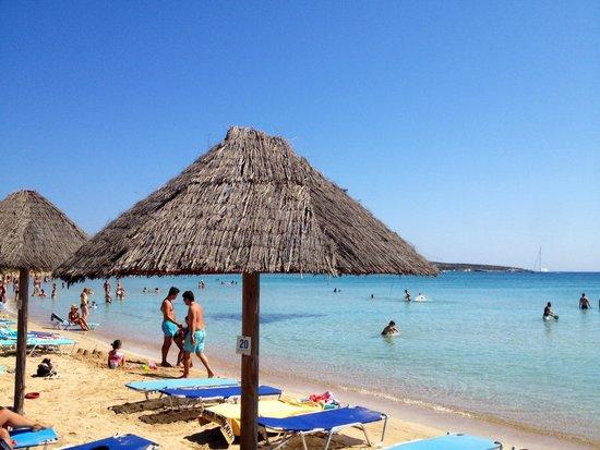 Surfing Beach Village: La spiaggia attrezzata