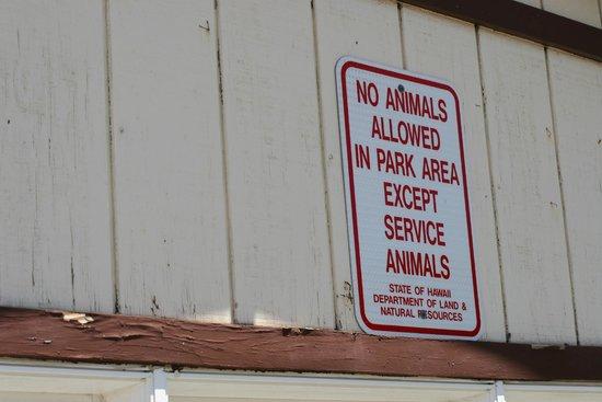 Diamond Head (Cabeza de Diamante): 介助犬等以外の動物、連れ込み禁止。