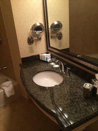 Omni Atlanta Hotel at CNN Center : Bath II